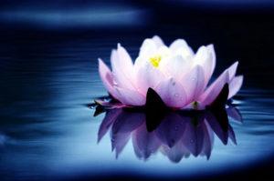 CHARLA - La Sabiduría del Tao. @ Fundación Sophia